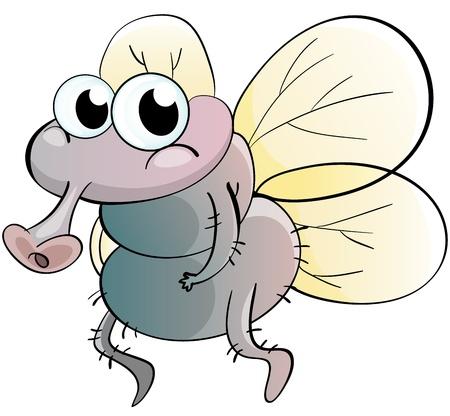 Illustration of a cartoon fly Vector