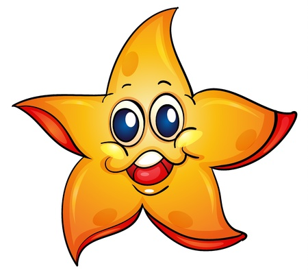 stella marina: Illustrazione di una stella marina