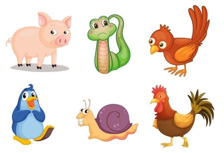 schattige dieren cartoon: Illustratie van het verzamelen van dieren
