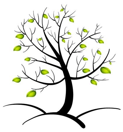 kale: Illustratie van de boom des levens