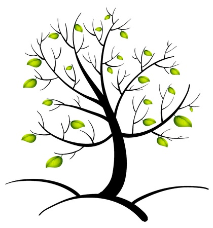 new plant: Illustration of the tree of life