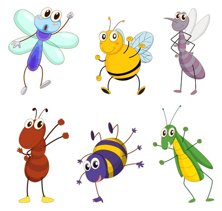 cartoon bug: Illustration of a set of cute animals