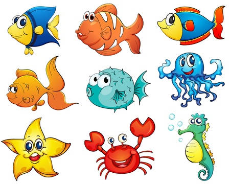 Illustration of tropical fish collection Vector