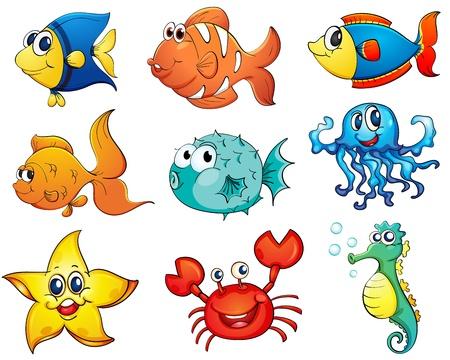 cangrejo caricatura: Ilustración de la colección de peces tropicales Vectores