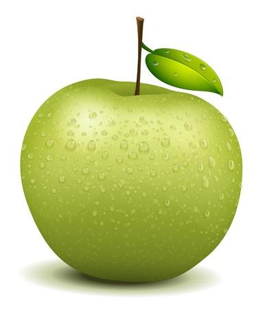 agrio: Illlustration de un realismo de color verde manzana