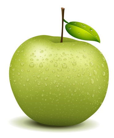 wet leaf: Illlustration of a realistic green apple