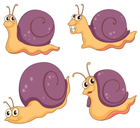 caracol: Ilustración de una colección de caracoles