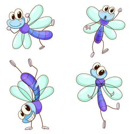 Illustration of a dragonfly series on white Vector