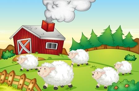 flocks: Illustration of sheep on a farm