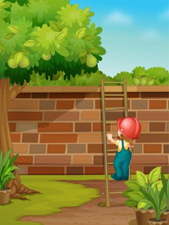 ladder  fence: Illustration of picking fruit in yard