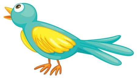 Illustration of a small green bird Vector