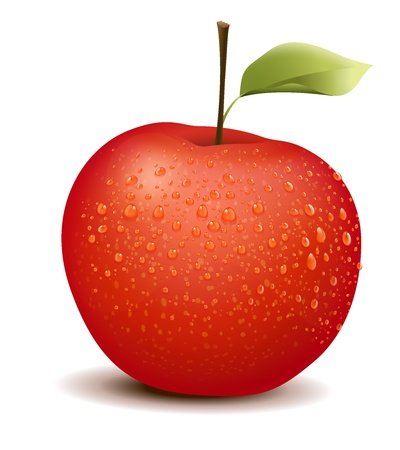 Illustration of photo-like red apple Vector