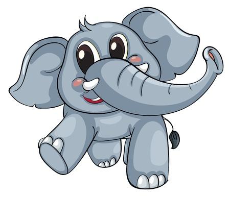 Lindo elefante sobre un fondo blanco