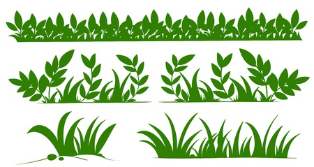 grass silhouette: Illustration of grass silhouettes