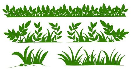 gramineas: Ilustraci�n de siluetas de hierba
