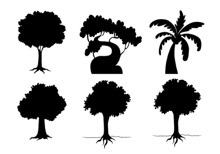 tall tree: Illustration of tree and plant silhouettes Illustration
