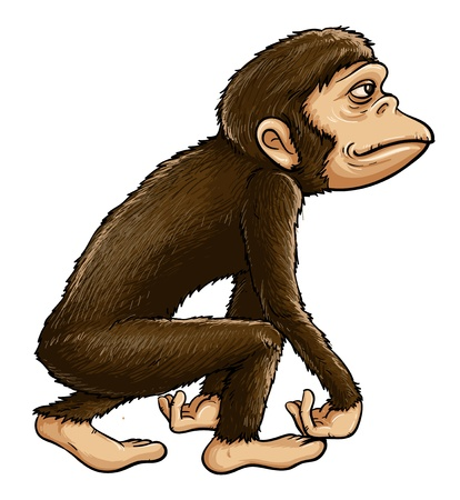primates: Illustration of early man from evolution series Illustration