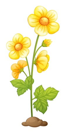 Illustration of isolated flower in soil Vector