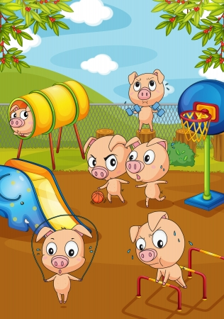school playground: Illustration of pigs working out Illustration