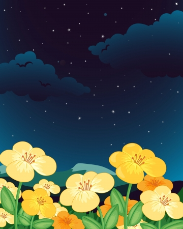 Illustration of flowers at night Stock Vector - 13960956