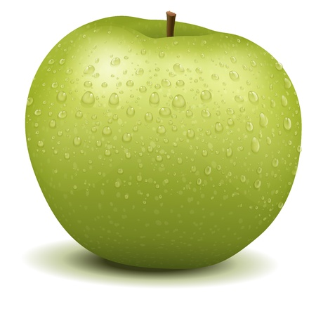 Illustration of a realistic apple