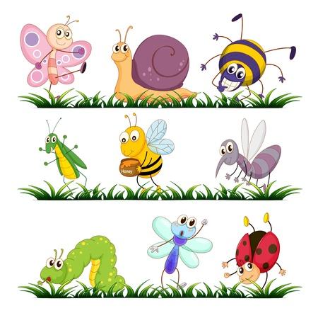 mariposa caricatura: Ilustración de los insectos en la hierba