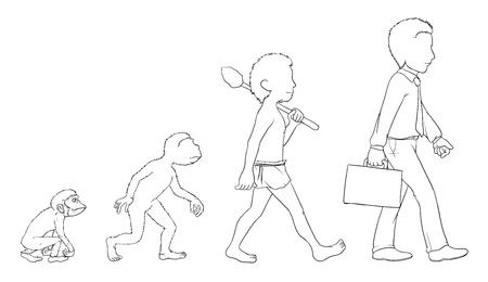 Illustration of evolution outline on white Vector