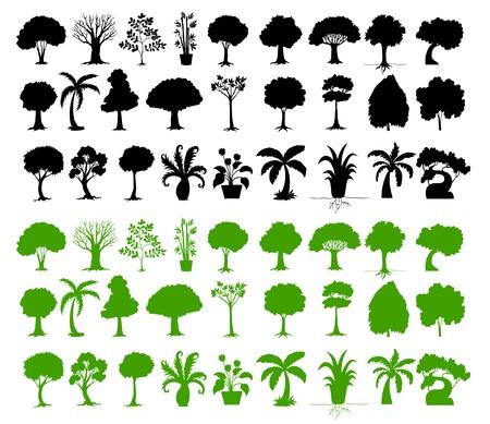 feuille arbre: Illustration de silhouettes d'arbres sur fond blanc Illustration