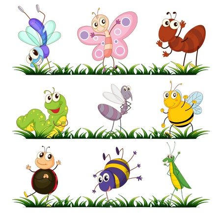 Illustration of a group of insects Stock Vector - 14009483
