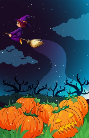 illustration of a witch flying in the night Stock Vector - 14049218