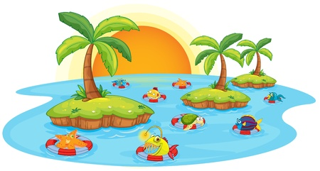 sol caricatura: ilustración de los peces en un estanque sobre un fondo blanco