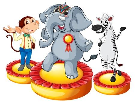 mono caricatura: Ilustración de los animales en el podio Vectores