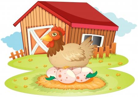 pollo caricatura: ilustración de la casa de la granja, gallinas y huevos