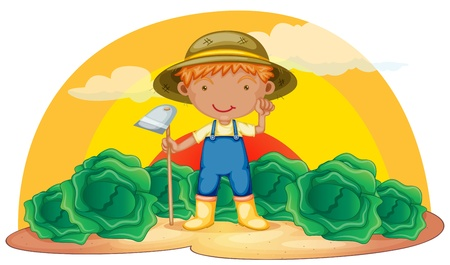 cabbage: illustration of a boy working in farms