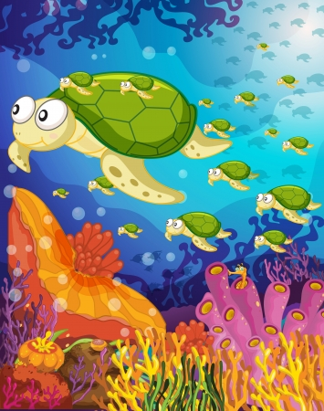 sea turtle: illustration of a tortoise swimming in water