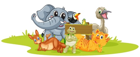 ilustración de diversos animales sobre un fondo blanco Ilustración de vector