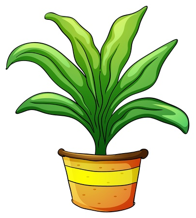 indoor bud: illustration of a plant pot on a white background