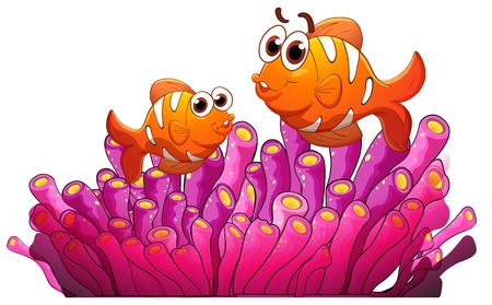 anemones: illustration of fish and seaweed on a white background Illustration
