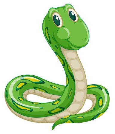 illustratie van groene slang op een witte achtergrond Vector Illustratie