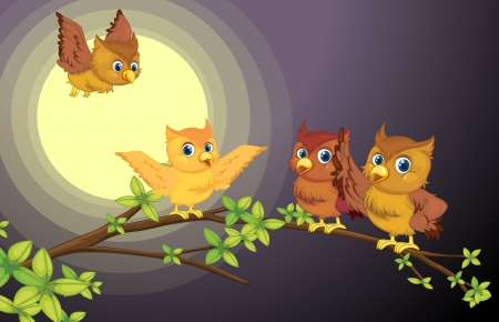 illustration of four owls on the tree branch in night Vector
