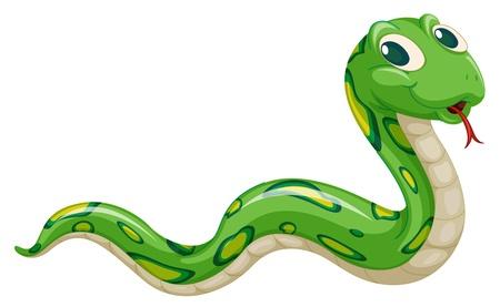 ilustración de la serpiente verde sobre un fondo blanco Ilustración de vector