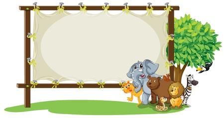 selva: ilustración de los animales con el tablero en blanco
