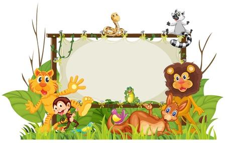 selva: ilustración de diversos animales sobre un fondo blanco