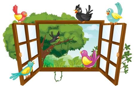 finestra: illustrazione di vari uccelli su uno sfondo bianco Vettoriali
