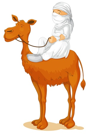 illustration of a camel on white background Vector