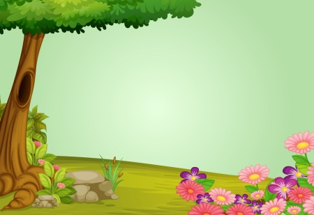 birds scenery: illustration of beautiful nature and greenery Illustration