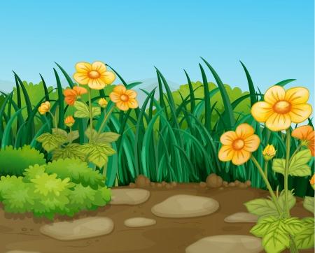 flor caricatura: Ilustración de un terreno hermosa naturaleza Vectores