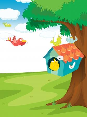 maison oiseau: illustration des oiseaux et des maisons d'oiseaux sur l'arbre