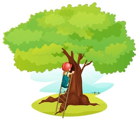 illustratie van een jongen en ladder onder boom