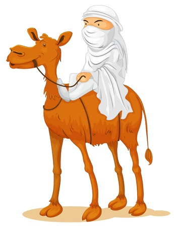 camel in desert: illustration of a camel on white background